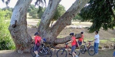 טיולי אופניים סביב קסם המגע